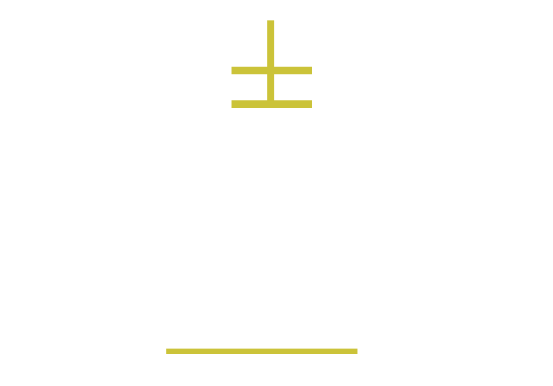 MSN Accounting
